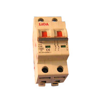 Aptomat loại 2 cực dòng điện 63A LiOA MCB2063/6