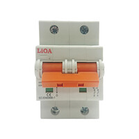 Aptomat loại 2 cực dòng điện 10A LiOA MCB2010/6
